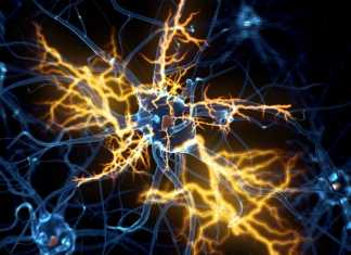 'Encouraging early results' for ALS drug candidate