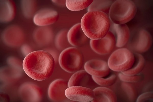 Sangamo & Pfizer report data for haemophilia A gene therapy