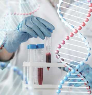Sygnis snaps up Innova Biosciences in €11.5m deal