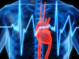 Study shows Novartis' heart drug cuts cardiovascular risk in heart attack survivors