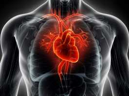 Shortlist revealed for £30m cardiovascular disease research prize