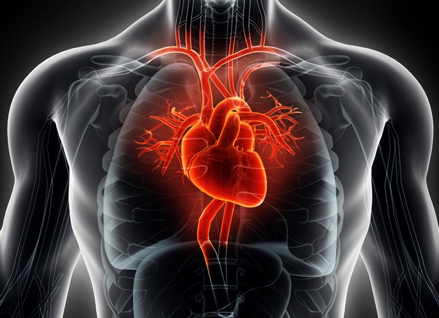 Brilinta approved in US to reduce the risk of first heart attack or stroke