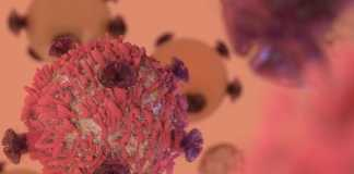 NIH partners with industry to develop cancer immunotherapy strategies