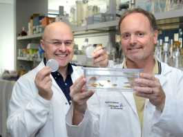 Promising new medicine for ALS discovered