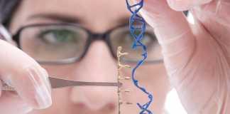 Researchers revolutionise the CRISPR method