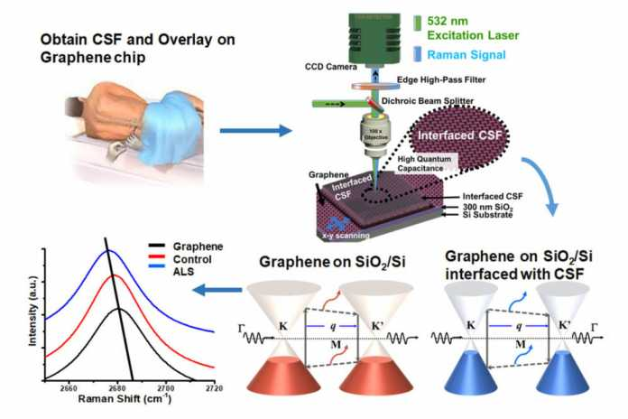Graphene may be key to detecting ALS