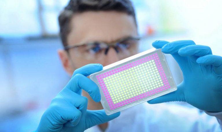 Drug discovery partnership for Kymab & LifeArc