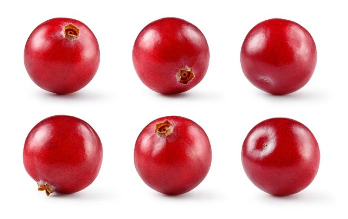 Cranberries utilised in fight against antimicrobial resistance
