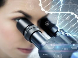 HepaRegeniX to advance liver disease inhibitor to clinic following financing