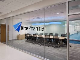 Kite adds industry veterans to leadership team