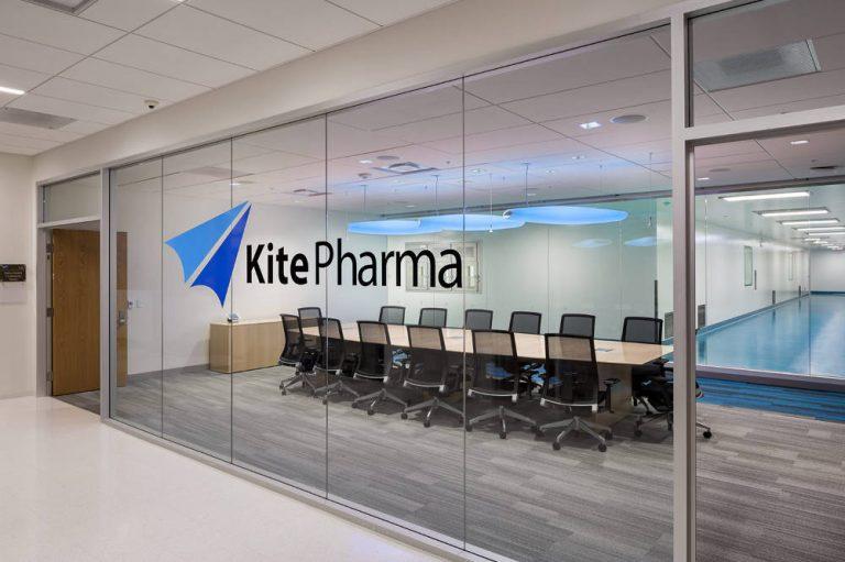 Kite adds industry veterans to leadership team